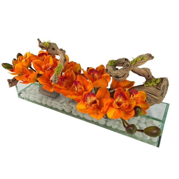 Cymbidium Aquarium Orchid Floral Arrangement in Vase by Bloomsbury Market