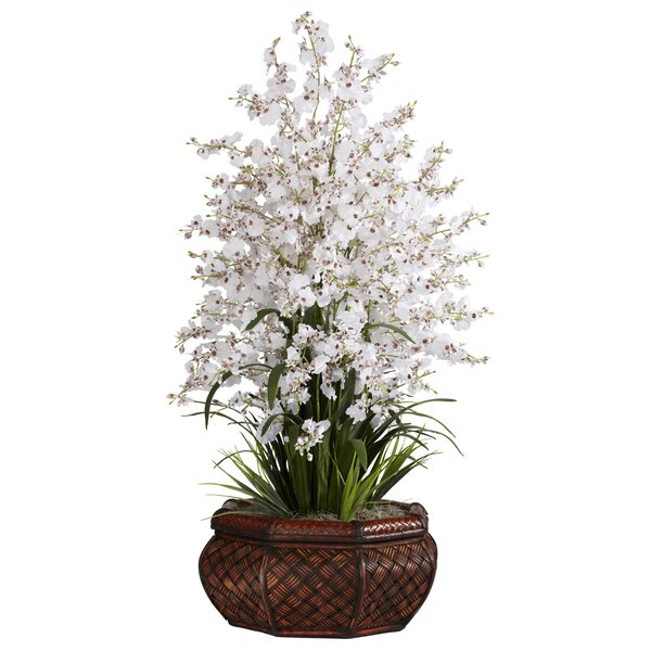 Large Dancing Lady Orchids Floral in Vase by Nearly Natural
