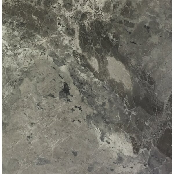 Carbon 12 x 12 Marble Field Tile in Black by Seven Seas