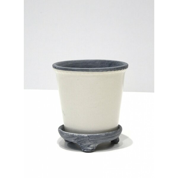 Chantrell Ceramic Pot Planter by Williston Forge