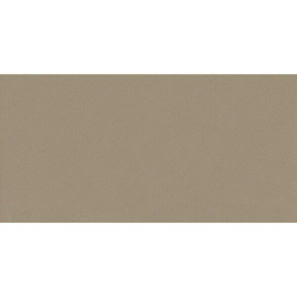 Element 12 x 24 Porcelain Field Tile in Matte Latte by Walkon Tile