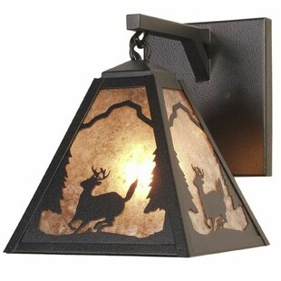 Shop for Timber Ridge 1-Light Outdoor Wall Lantern By Steel Partners