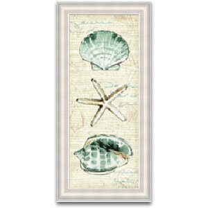 'Coastal Shells' Framed Graphic Art by Beachcrest Home