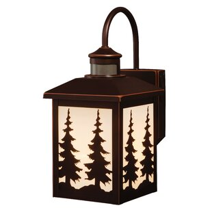 Best Choices Jennings 1-Light Outdoor Wall Lantern By Loon Peak