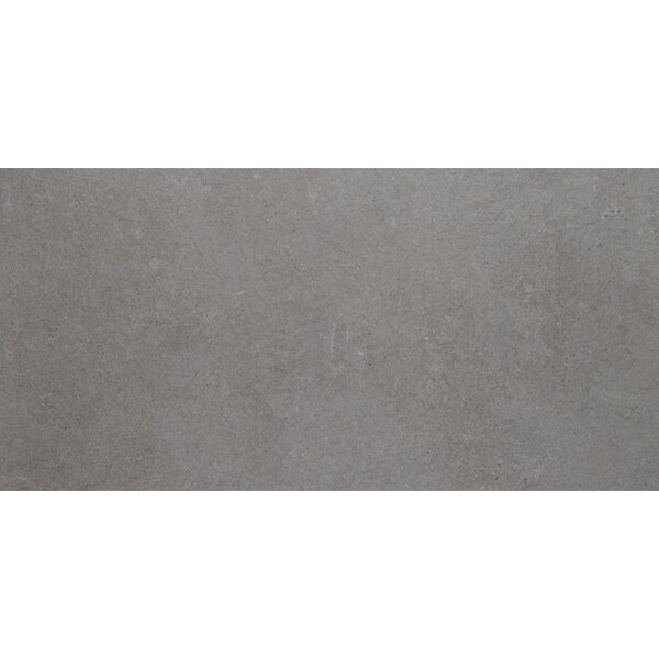Haut Monde 12 x 24 Porcelain Field Tile in Glitterati Granite by Daltile