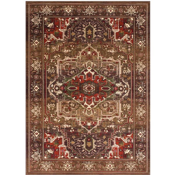 Medina Bohemian Style Light Brown Area Rug by Bloomsbury Market