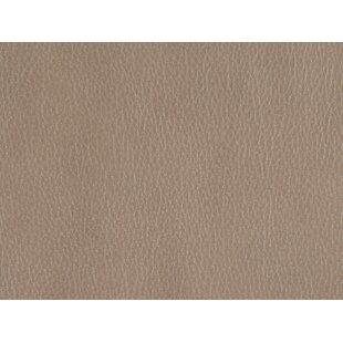 Sandovol Leather Reclining Loveseat