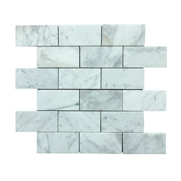 Marmol Statuario Brick 2 x 3 Natural Stone Mosaic Tile in White Marble by Kertiles