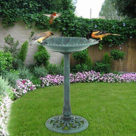 Pedestal Birdbath by Zeny