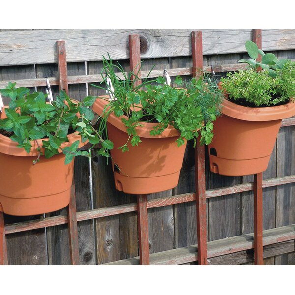 Self-Watering Plastic Wall Planter (Set of 3) by Bloem