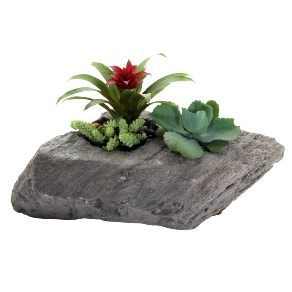 Sierra Artisan ™ Pumice Pot Planter by Featherock, Inc