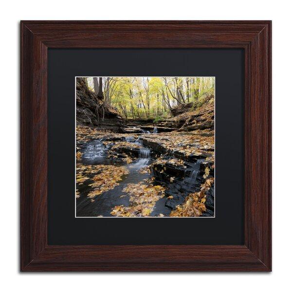 Lakeview Autumn Falls by Kurt Shaffer Framed Photographic Print by Trademark Fine Art