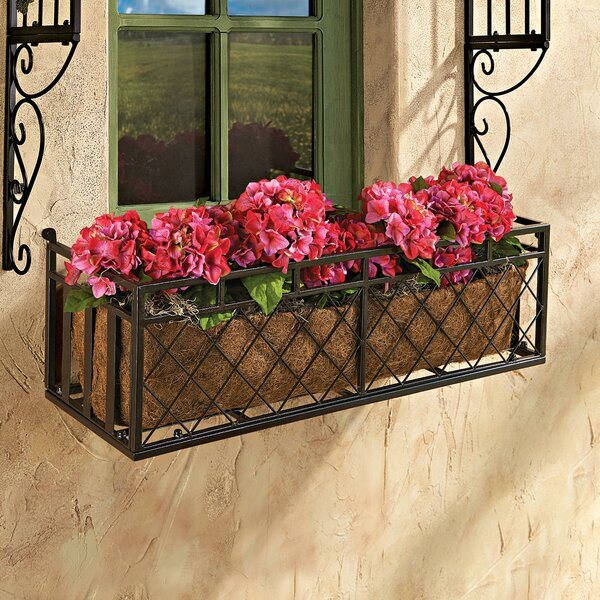 Tubular Steel Window Box Planter by Design Toscano