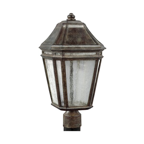 Maxine Outdoor 1-Light LED Lantern Head by Darby Home Co