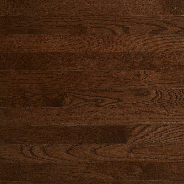 Color Plank 3-1/4 Engineered White Oak Hardwood Flooring in Metro Brown by Somerset Floors