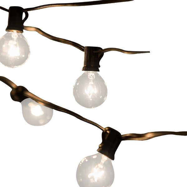 Jaime 50-Light 50 ft. Globe String Lights by Laurel Foundry Modern Farmhouse