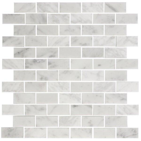 1 x 2 Carrara Marble Mosaic Tile in White by Susan Jablon