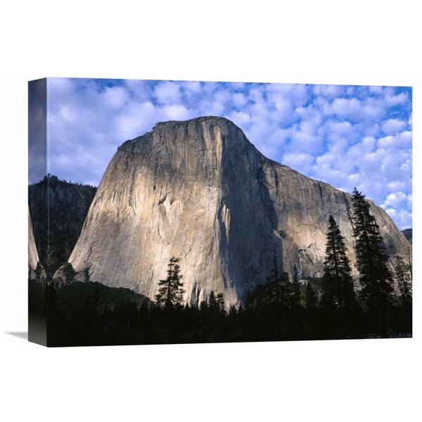 Nature Photographs El Capitan Rising over the Forest, Yosemite National Park, California Photographic Print on Wrapped Canvas by Global Gallery