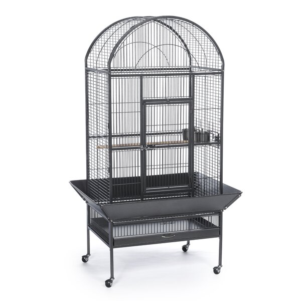 Large Dome Top Bird Cage by Prevue Hendryx