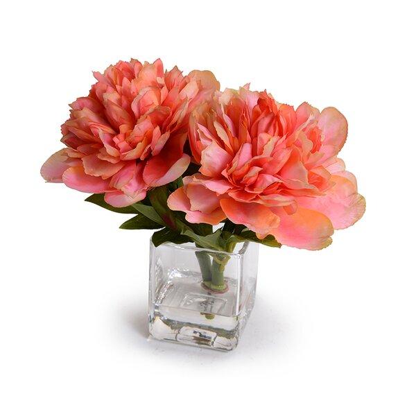 Coral Peonies Floral Arrangement in Vase by House of Hampton