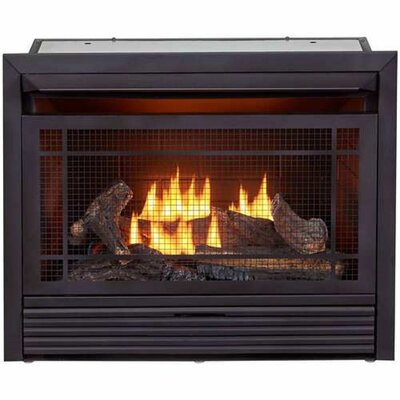 Vent Free Propane/Natural Gas Fireplace Insert Duluth Forge