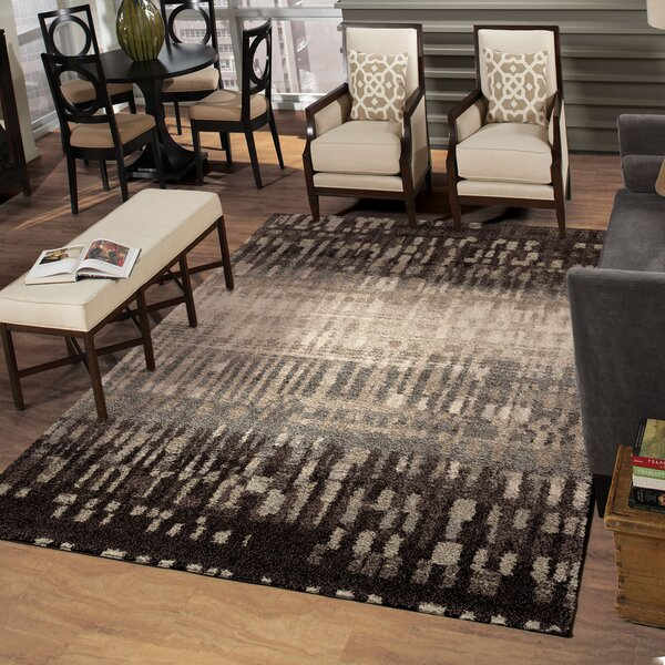 Claybourne Black Area Rug by The Conestoga Trading Co.