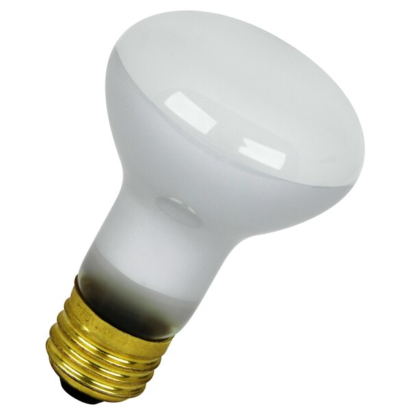 120-Volt Incandescent Light Bulb by FeitElectric