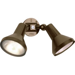 Affordable Chaidez Head LED 2-Light Outdoor Spotlight By Ebern Designs