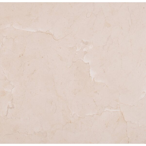 Classic 12 x 12 Marble Field Tile in Beige by MSI