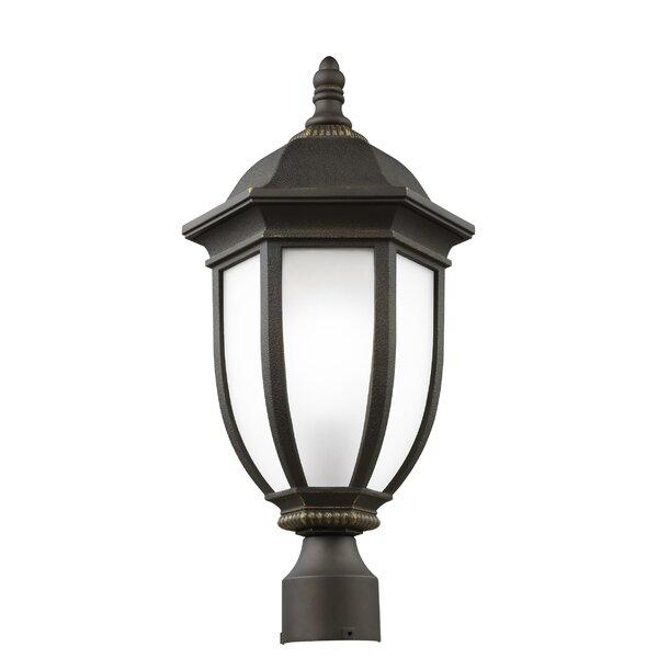 Nicolette 1-Light Outdoor Lantern Head by Charlton Home