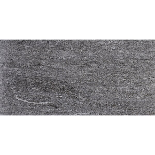 Embassy 12 x 24 Porcelain Wood Look Tile in Global Gray by Itona Tile