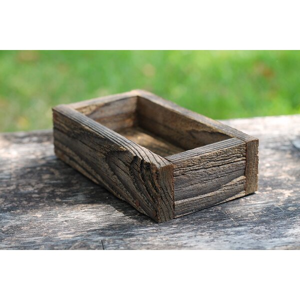 Dejesus Serving Tray by Millwood Pines