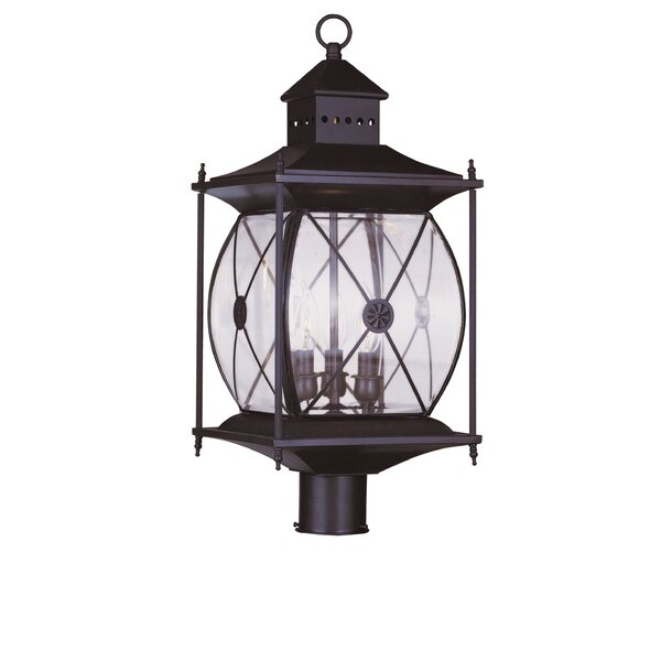 Ozias Outdoor 2-Light Lantern Head by Darby Home Co