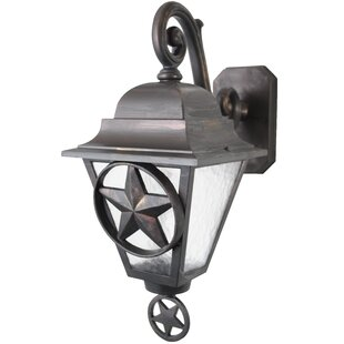 Penfield 1-Light Outdoor Wall Lantern By Alcott Hill Outdoor Lighting