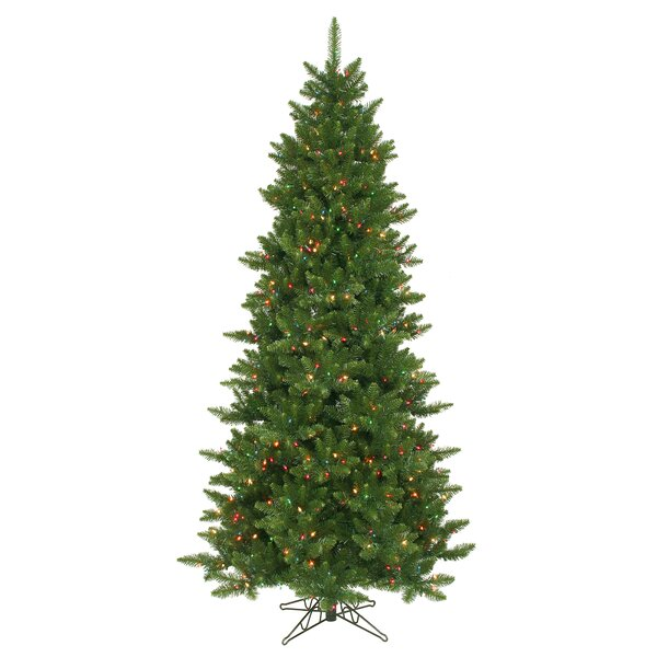 Camdon Fir 8.5' Green Artificial Slim Christmas Tree With 800 Multicolored Lights With Stand By The Holiday Aisle by The Holiday Aisle