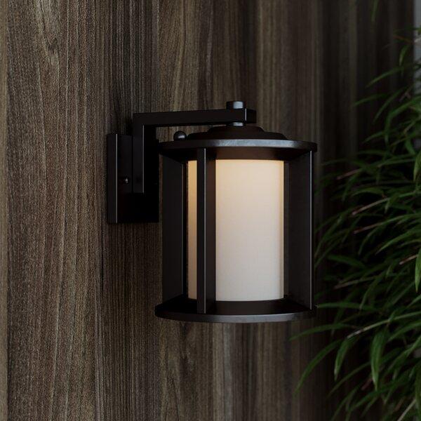 Loeffler 1-Light Outdoor Wall Lantern by Brayden Studio