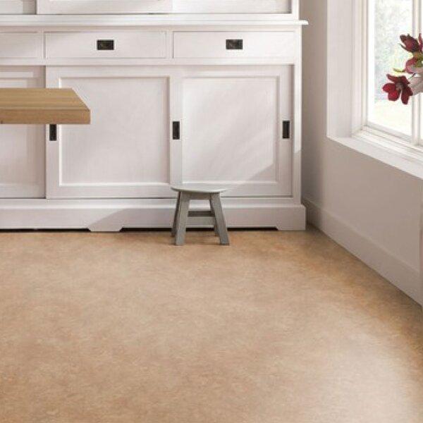 Marmoleum Click Cinch Loc 11.81 x 35.43 x 9.9mm Cork Laminate Flooring in Brown by Forbo