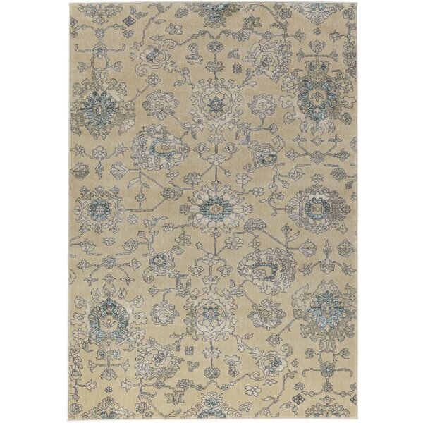 Colona Brown/Charcoal Area Rug by Charlton Home