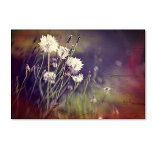 Family Reunion by Beata Czyzowska Young Photographic Print on Wrapped Canvas by Trademark Fine Art