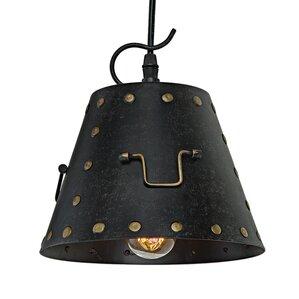 industrial 1light pendant light