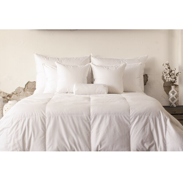 Mid Weight Cotton Down Comforter by Alwyn Home