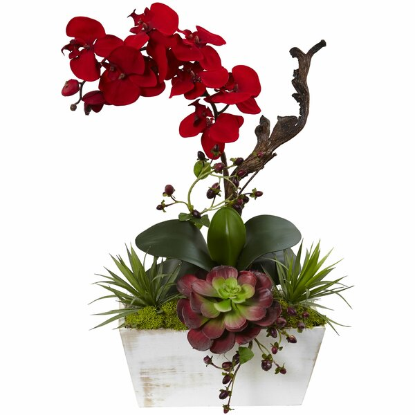 Seasonal Garden Orchids Floral Arrangement in Planter by Nearly Natural