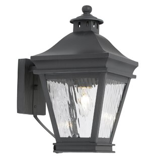 Looking for Lockwood 1-Light Outdoor Wall Lantern By Darby Home Co