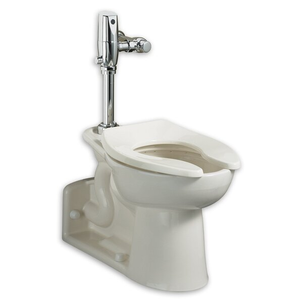Pressure Assist Dual Flush Elongated One-Piece Toilet (Seat Not Included) by American Standard