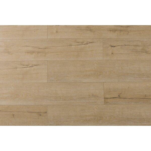 Jeramiah 7 x 48 x 12mm Oak Laminate Flooring in Century by Serradon