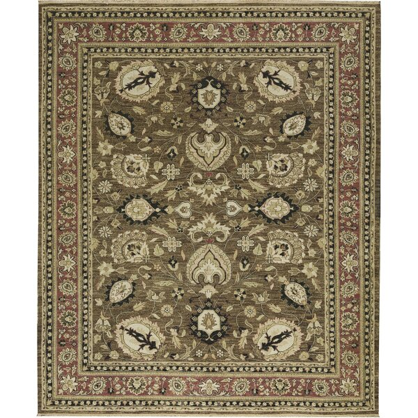 One-of-a-Kind Sumak Handwoven Wool Brown/Beige Indoor Area Rug by Bokara Rug Co., Inc.