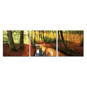 Baxton Studio Forest Oasis 3 Piece Framed Photographic Print on Wrapped Canvas Set by Wholesale Interiors