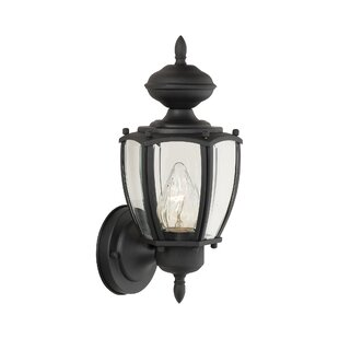 Big Save Park Avenue 1-Light Outdoor Sconce By Thomas Lighting