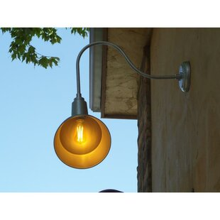 Bargain Alvarado Wall Mounted Outdoor Barn Light By August Grove