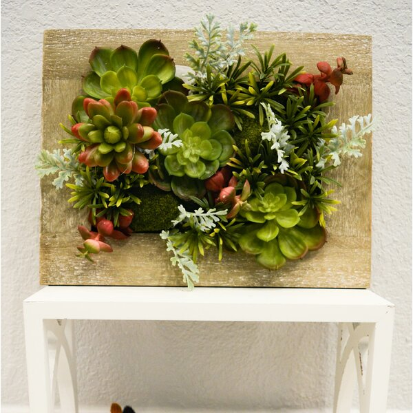 Artificial Hanging Succulent Plant with Rustic Wooden Picture Frame by Ebern Designs